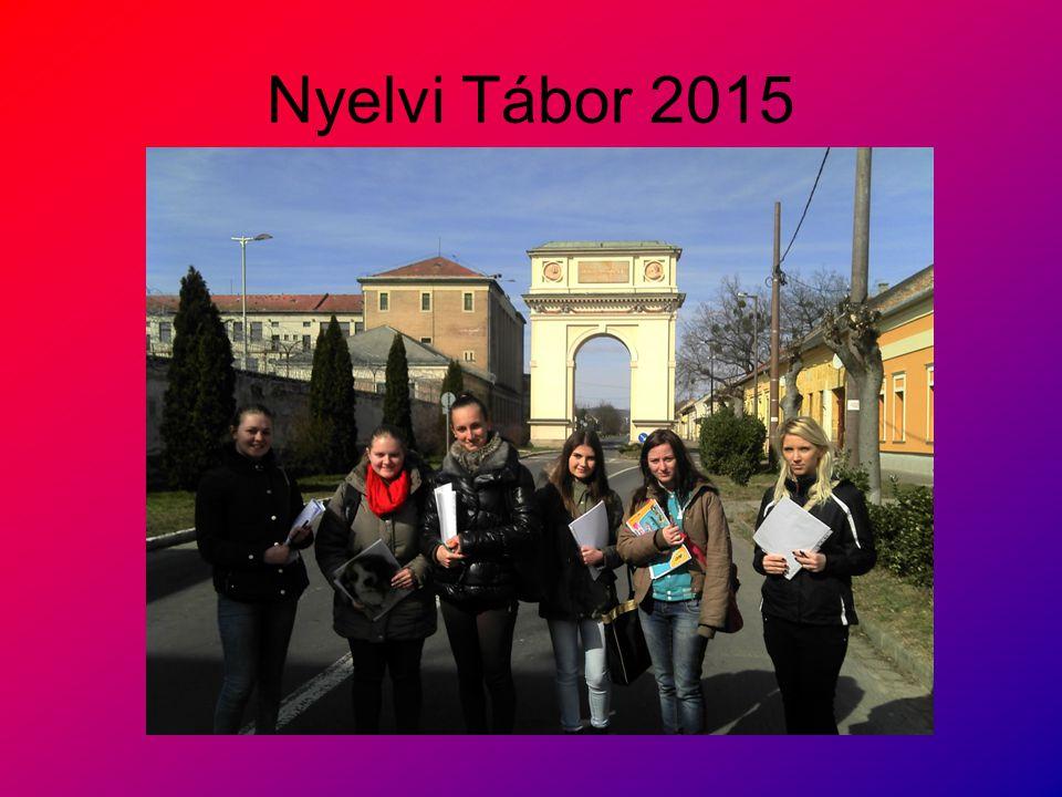 Nyelvi Tábor 2015