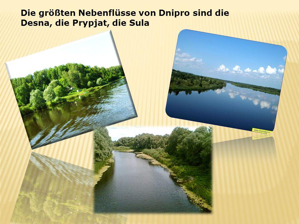 Die größten Nebenflüsse von Dnipro sind die Desna, die Prypjat, die Sula