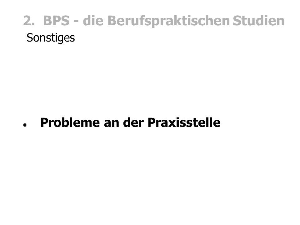 2. BPS - die Berufspraktischen Studien Sonstiges