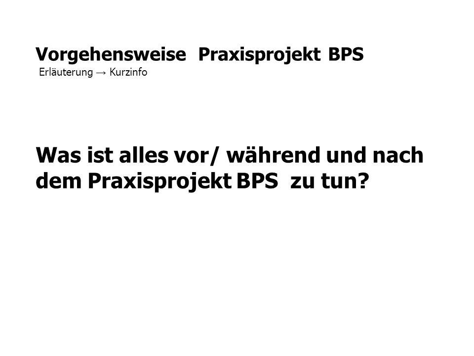 Vorgehensweise Praxisprojekt BPS Erläuterung → Kurzinfo