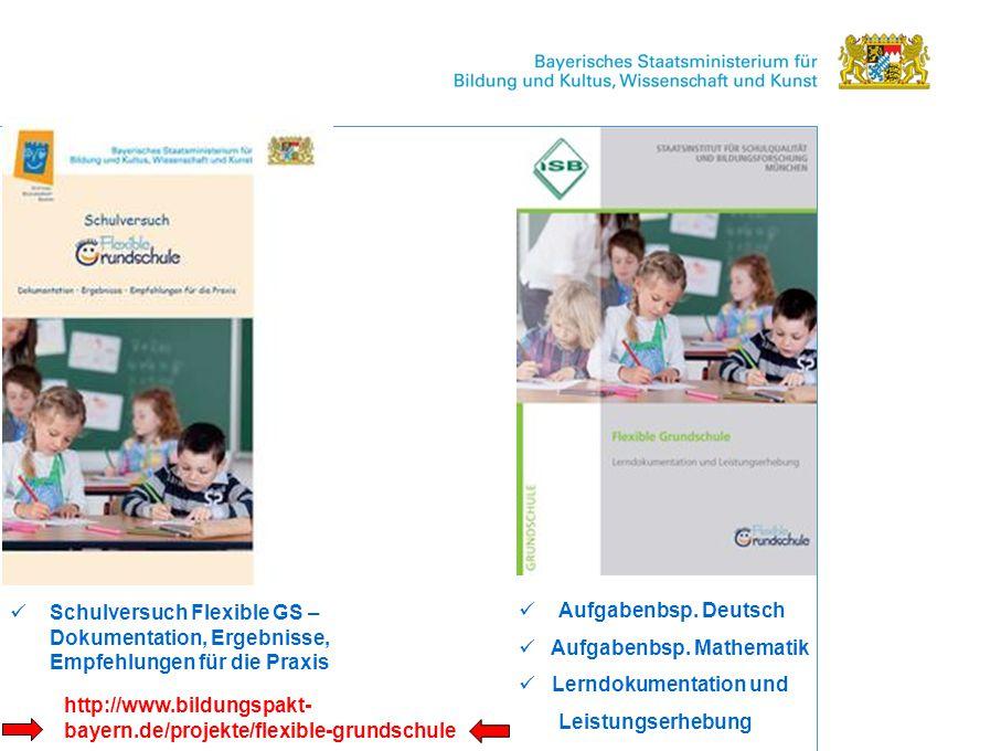 Schulversuch Flexible GS – Dokumentation, Ergebnisse, Empfehlungen für die Praxis