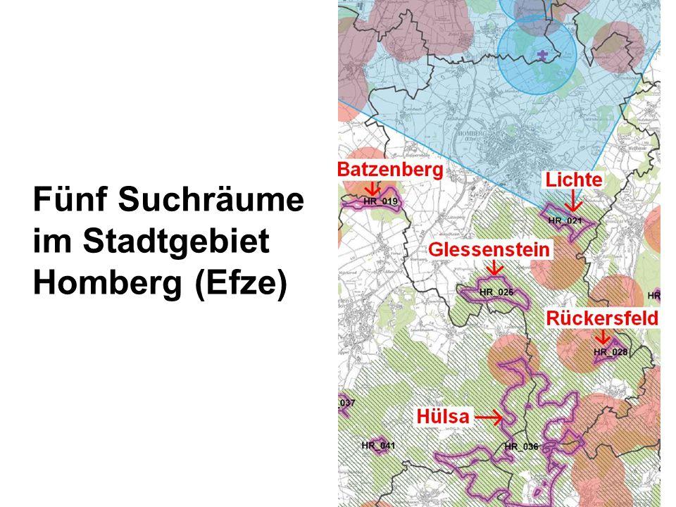 Fünf Suchräume im Stadtgebiet Homberg (Efze)