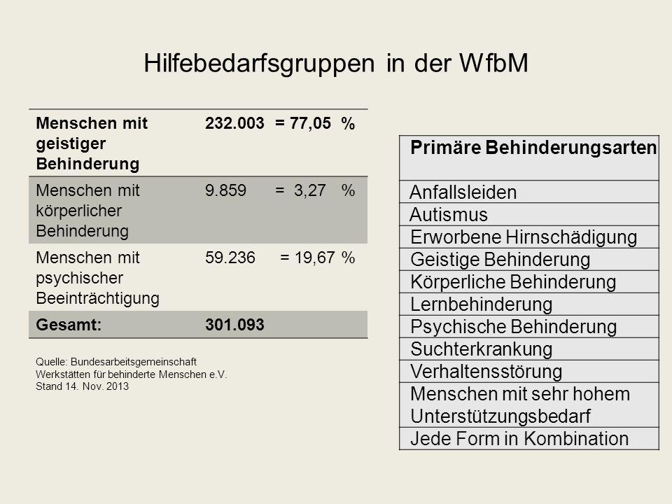 Hilfebedarfsgruppen in der WfbM
