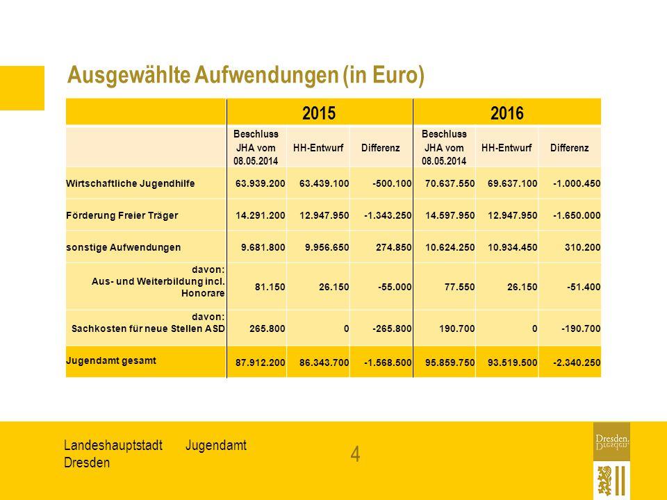 Ausgewählte Aufwendungen (in Euro)