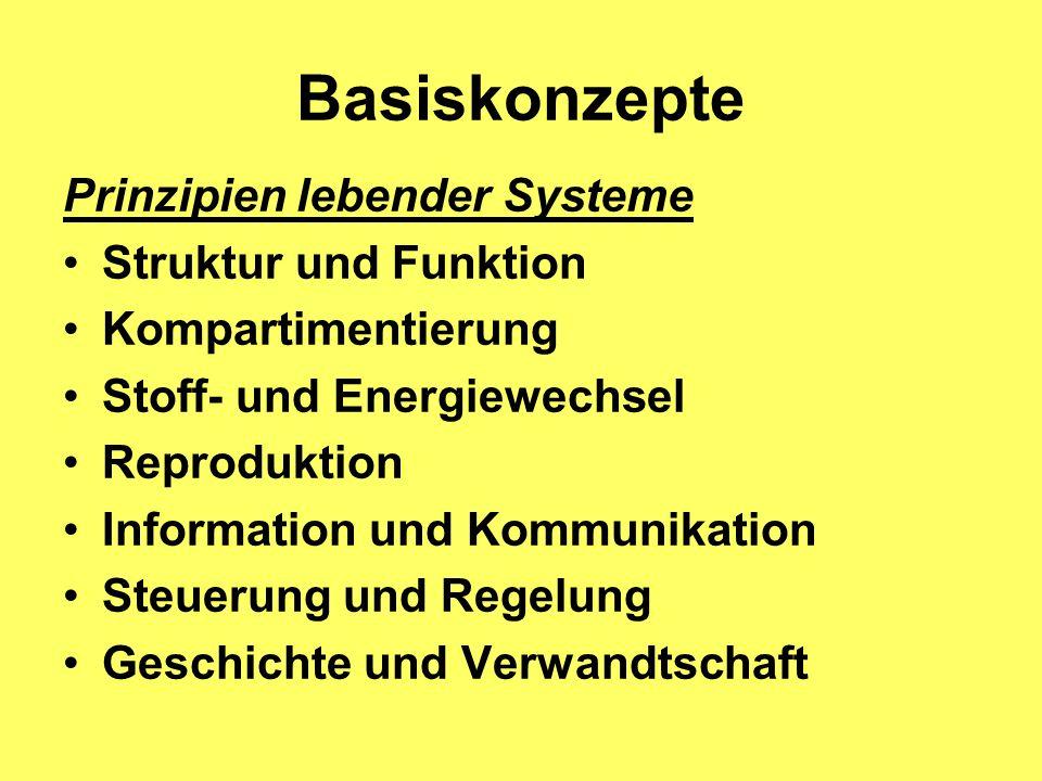 Basiskonzepte Prinzipien lebender Systeme Struktur und Funktion
