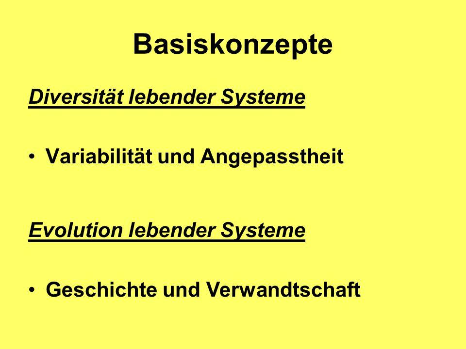 Basiskonzepte Diversität lebender Systeme