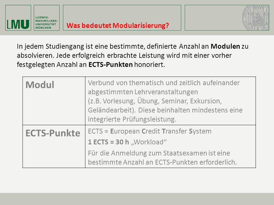 Modul ECTS-Punkte Was bedeutet Modularisierung