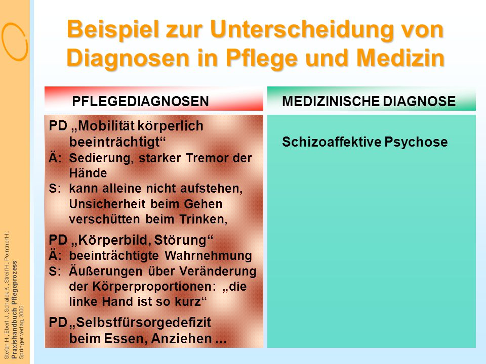 Beispiel zur Unterscheidung von Diagnosen in Pflege und Medizin