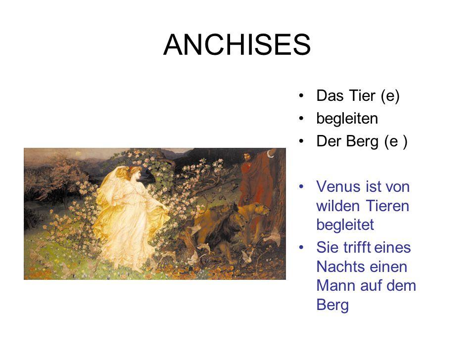 ANCHISES Das Tier (e) begleiten Der Berg (e )