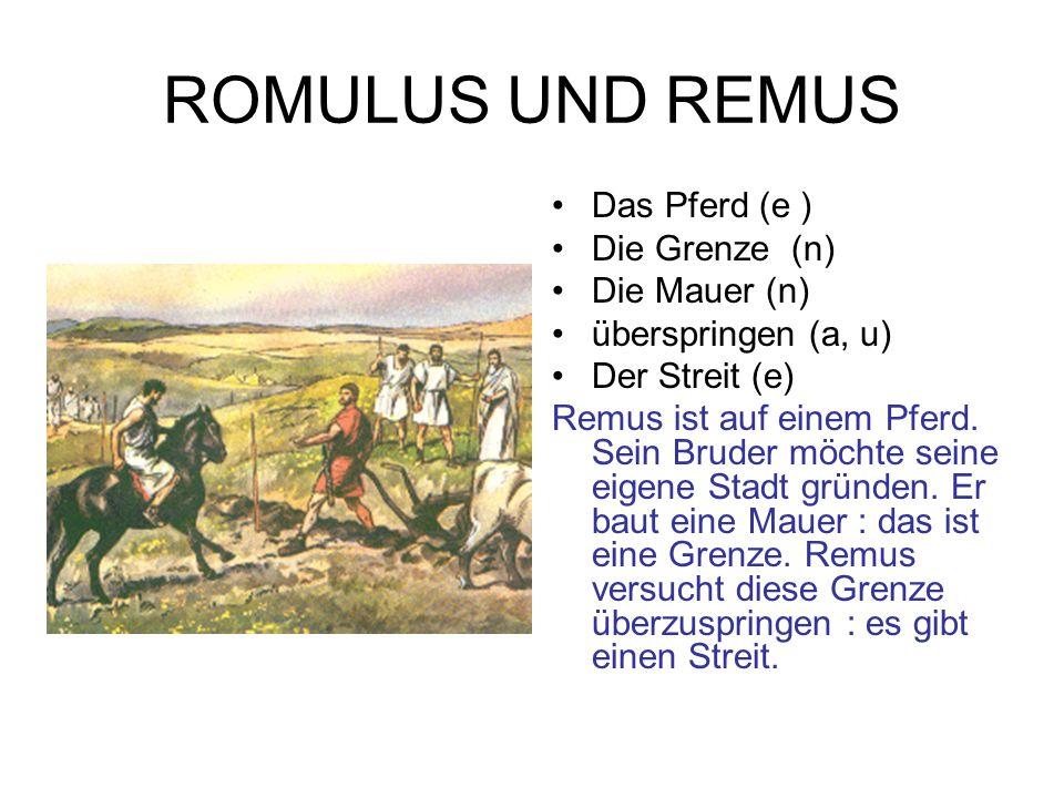 ROMULUS UND REMUS Das Pferd (e ) Die Grenze (n) Die Mauer (n)