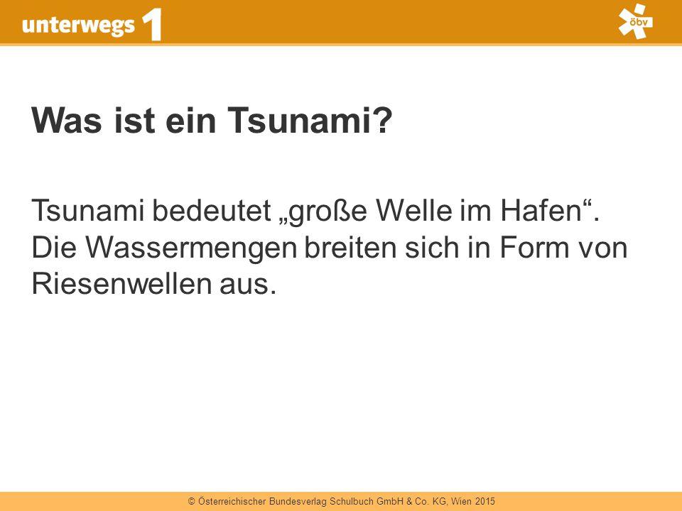 """Was ist ein Tsunami. Tsunami bedeutet """"große Welle im Hafen ."""