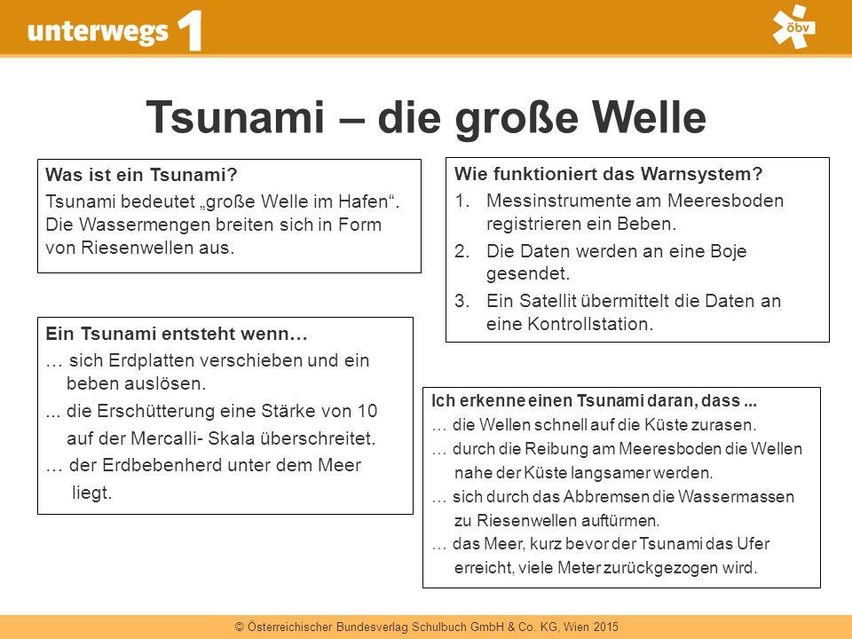 Tsunami – die große Welle