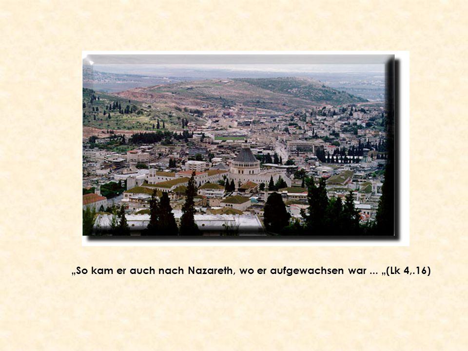 """""""So kam er auch nach Nazareth, wo er aufgewachsen war ... """"(Lk 4,.16)"""