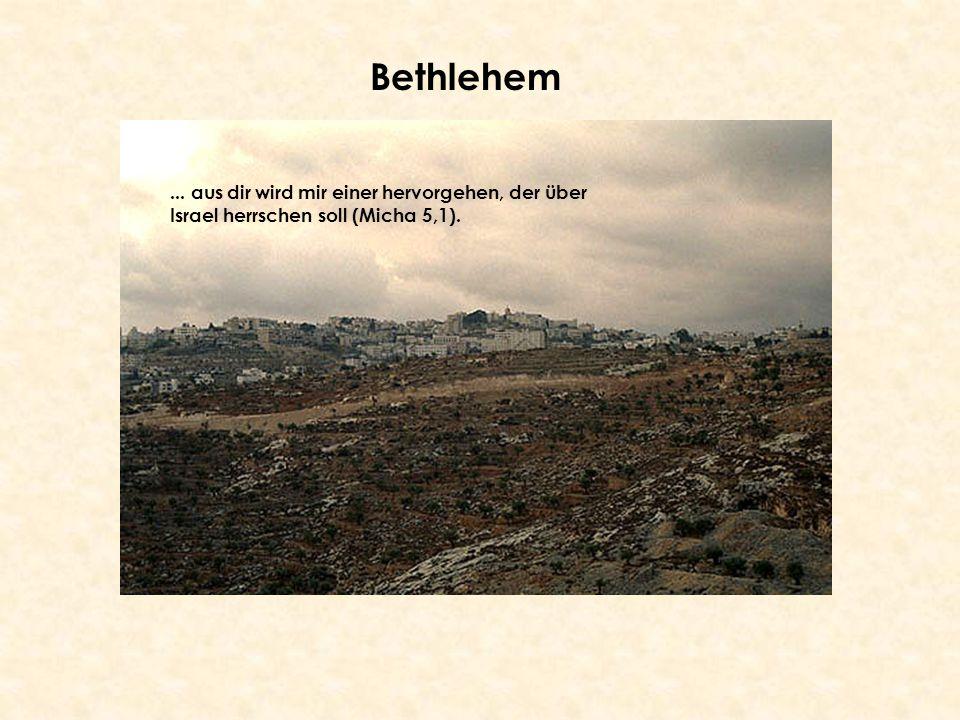 Bethlehem ... aus dir wird mir einer hervorgehen, der über Israel herrschen soll (Micha 5,1).