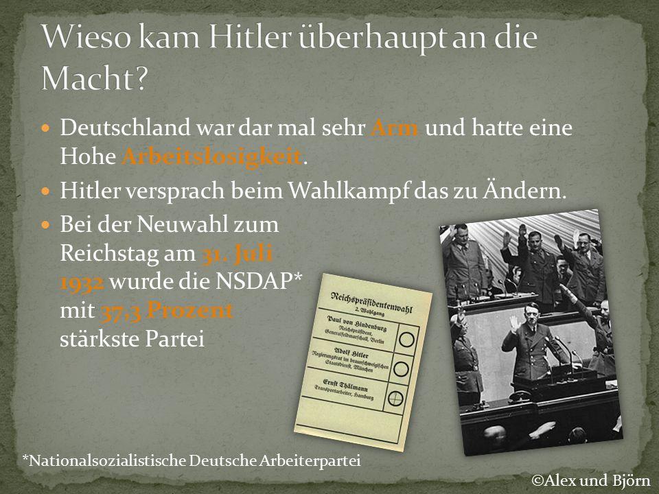 Wieso kam Hitler überhaupt an die Macht