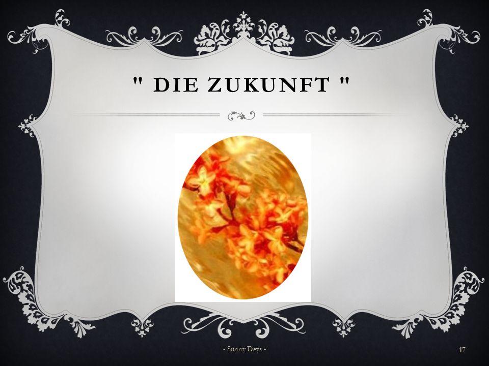 DIE ZUKUNFT - Sunny Deys -