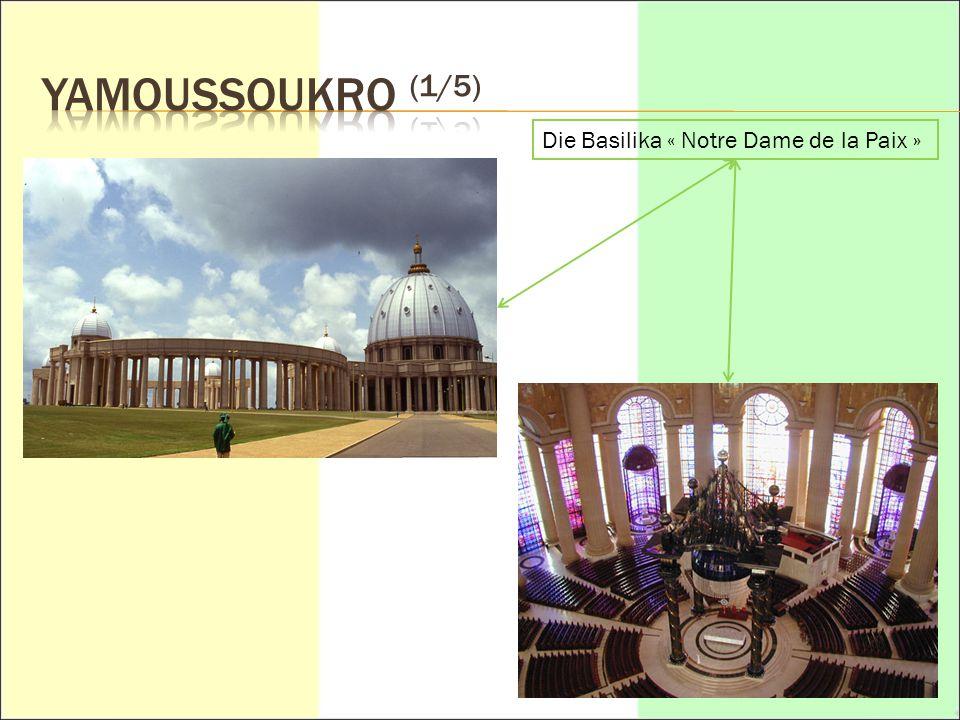 YAMOUSSOUKRO (1/5) Die Basilika « Notre Dame de la Paix »
