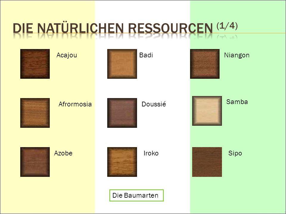 Die natürlichen Ressourcen (1/4)