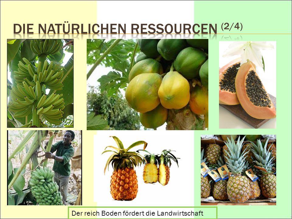 DIE NATÜRLICHEN Ressourcen (2/4)