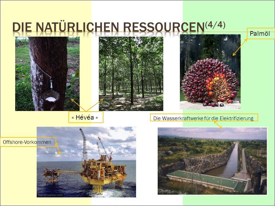 DIE NATÜRLICHEN Ressourcen(4/4)