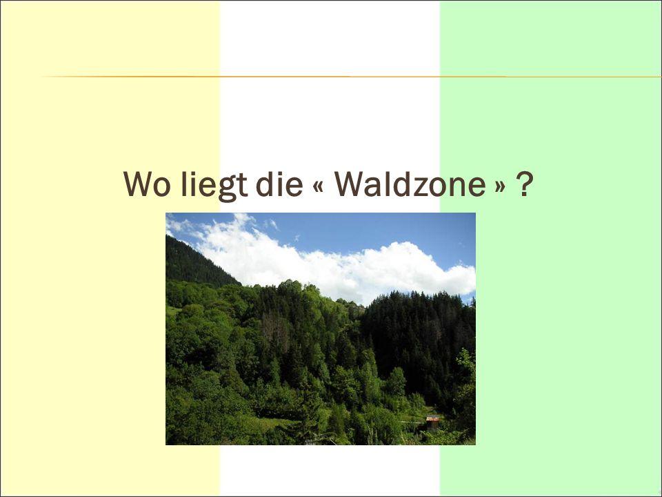 Wo liegt die « Waldzone »