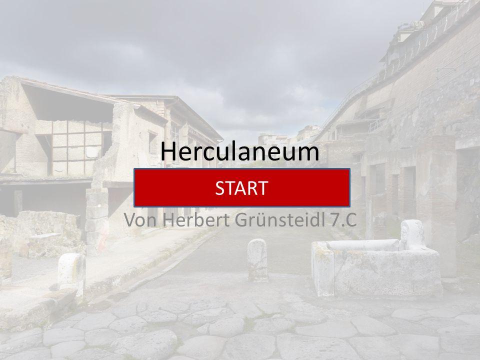 Von Herbert Grünsteidl 7.C