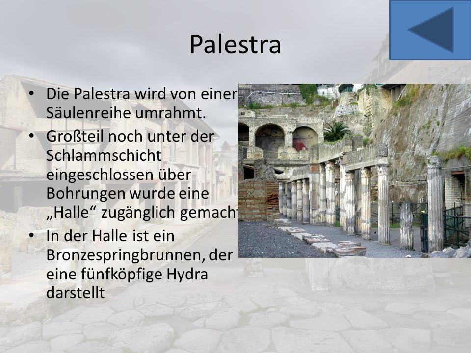 Palestra Die Palestra wird von einer Säulenreihe umrahmt.