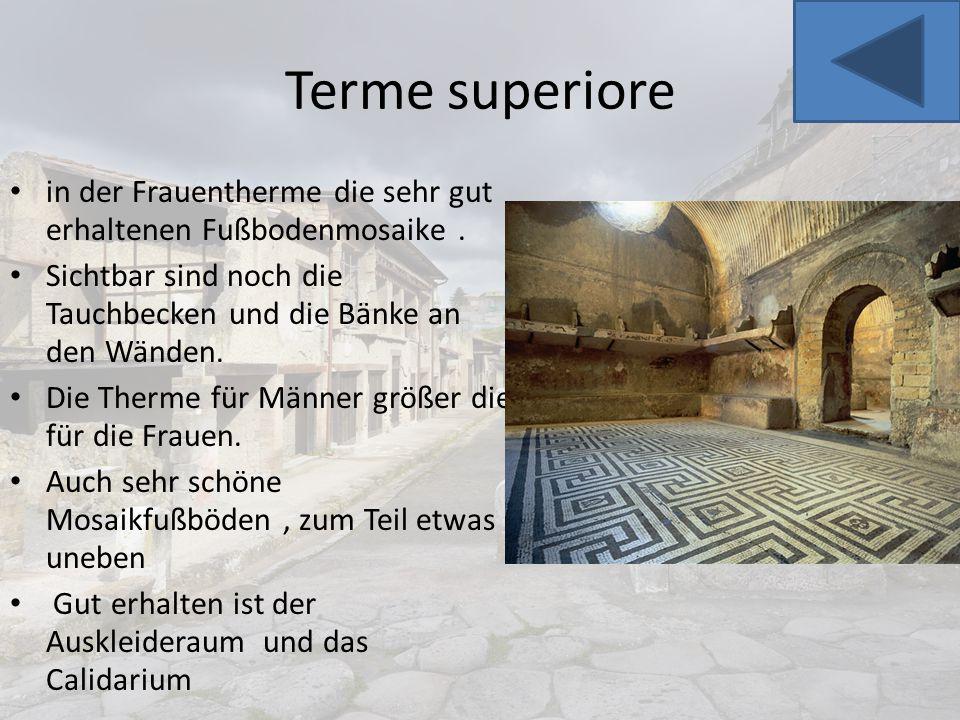 Terme superiore in der Frauentherme die sehr gut erhaltenen Fußbodenmosaike . Sichtbar sind noch die Tauchbecken und die Bänke an den Wänden.