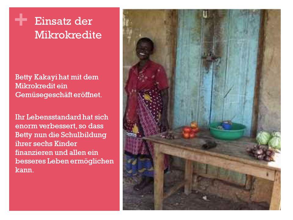 Einsatz der Mikrokredite