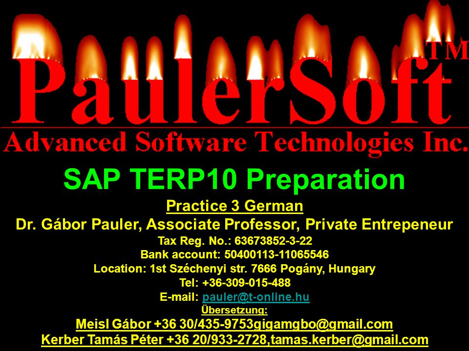 SAP TERP10 Preparation Practice 3 German
