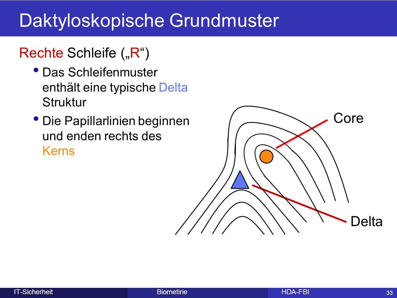 Daktyloskopische Grundmuster