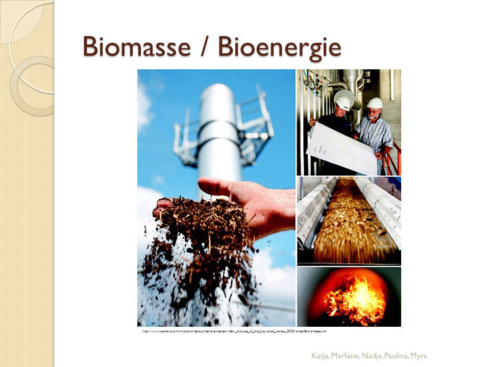 Biomasse / Bioenergie Katja, Marlène, Nadja, Paulina, Myra