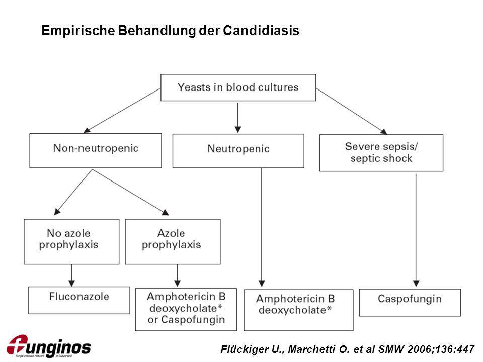 Empirische Behandlung der Candidiasis