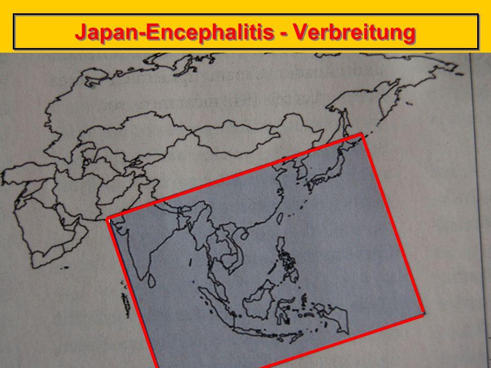 Japan-Encephalitis - Verbreitung