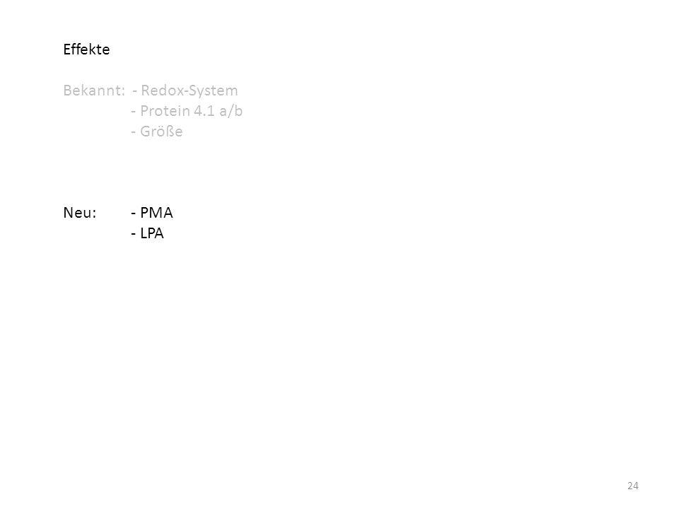 Effekte Bekannt: - Redox-System - Protein 4.1 a/b - Größe Neu: - PMA - LPA