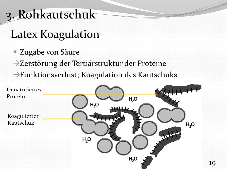 3. Rohkautschuk Latex Koagulation Zugabe von Säure