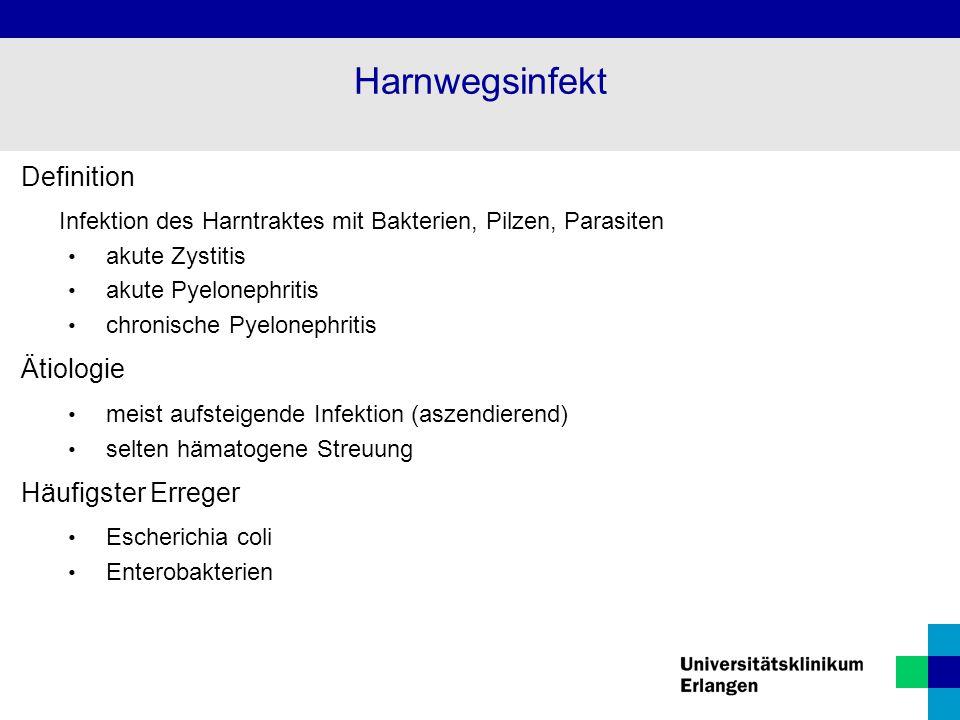 Harnwegsinfekt Definition Ätiologie Häufigster Erreger