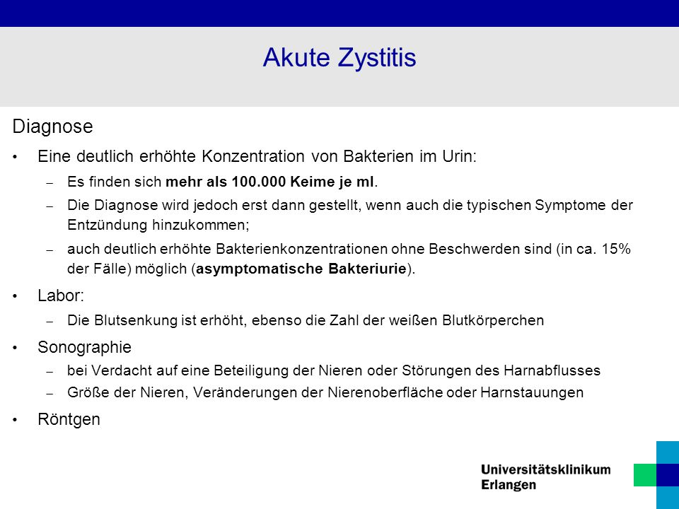 Akute Zystitis Diagnose