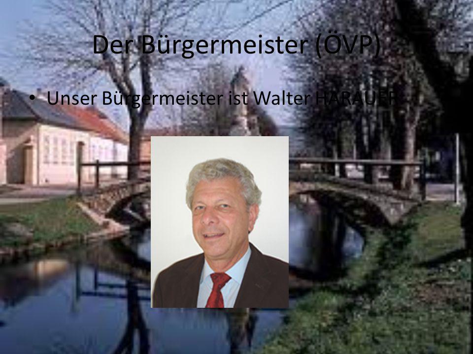 Der Bürgermeister (ÖVP)