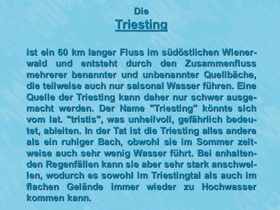 Die Triesting.