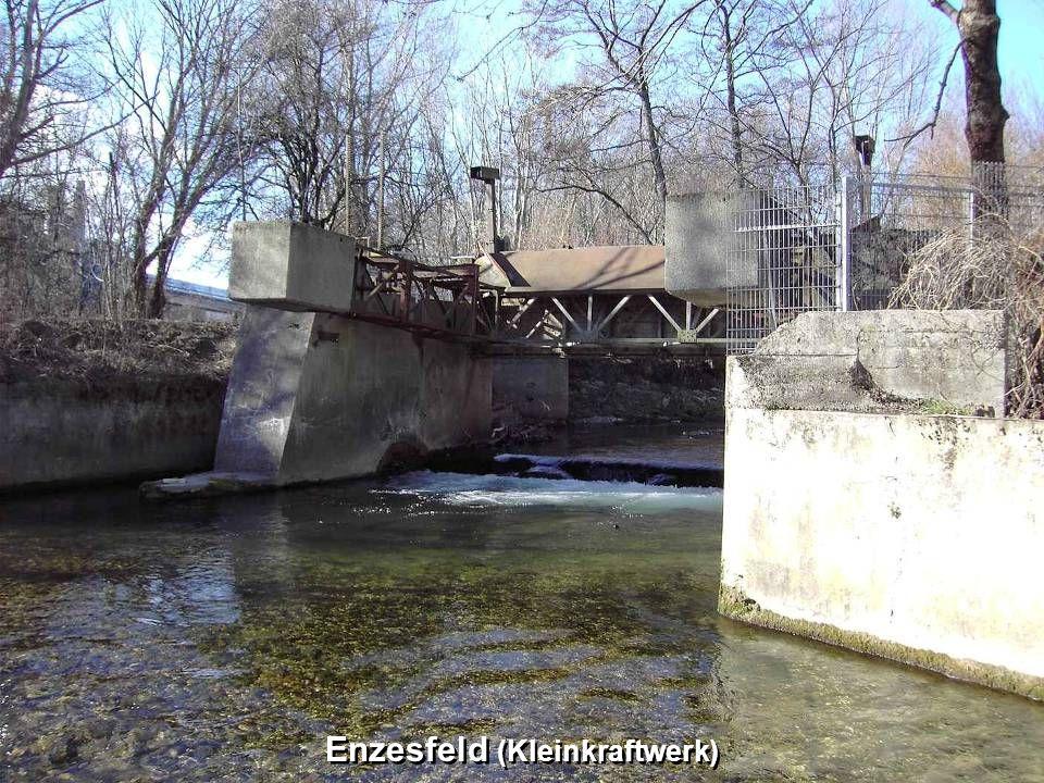 Enzesfeld (Kleinkraftwerk)