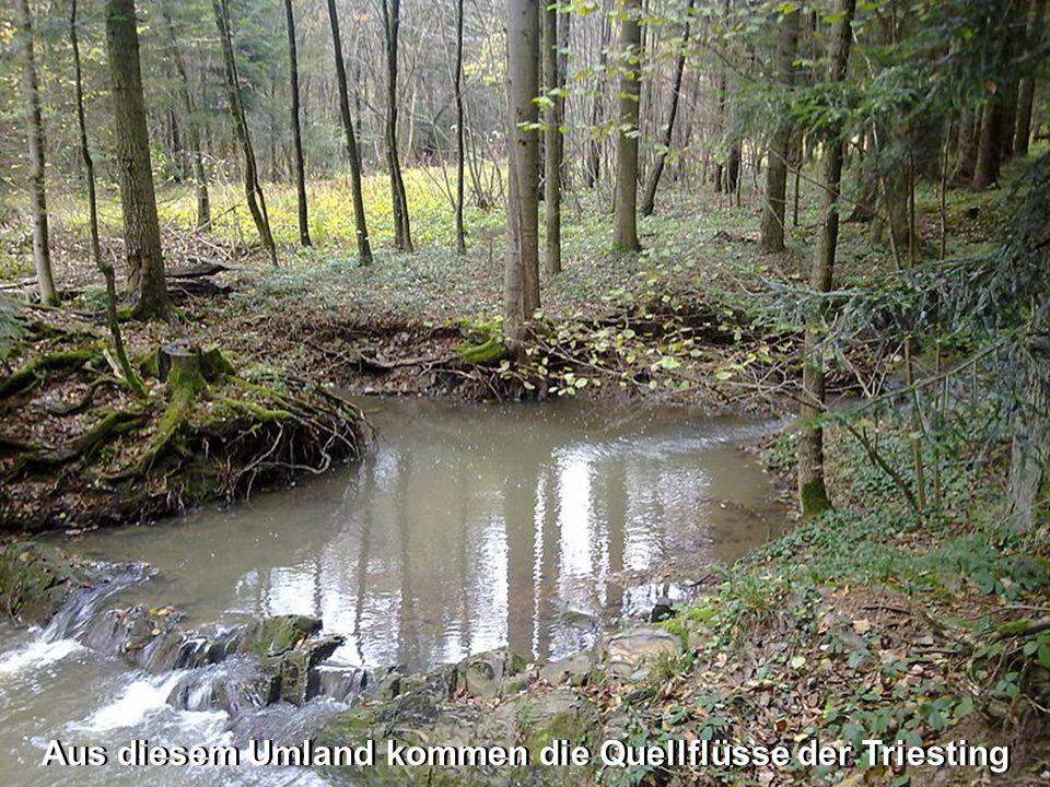 Aus diesem Umland kommen die Quellflüsse der Triesting