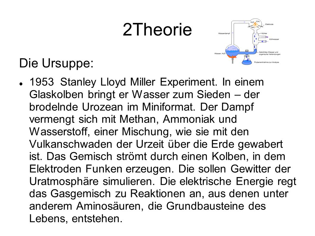 2Theorie Die Ursuppe: