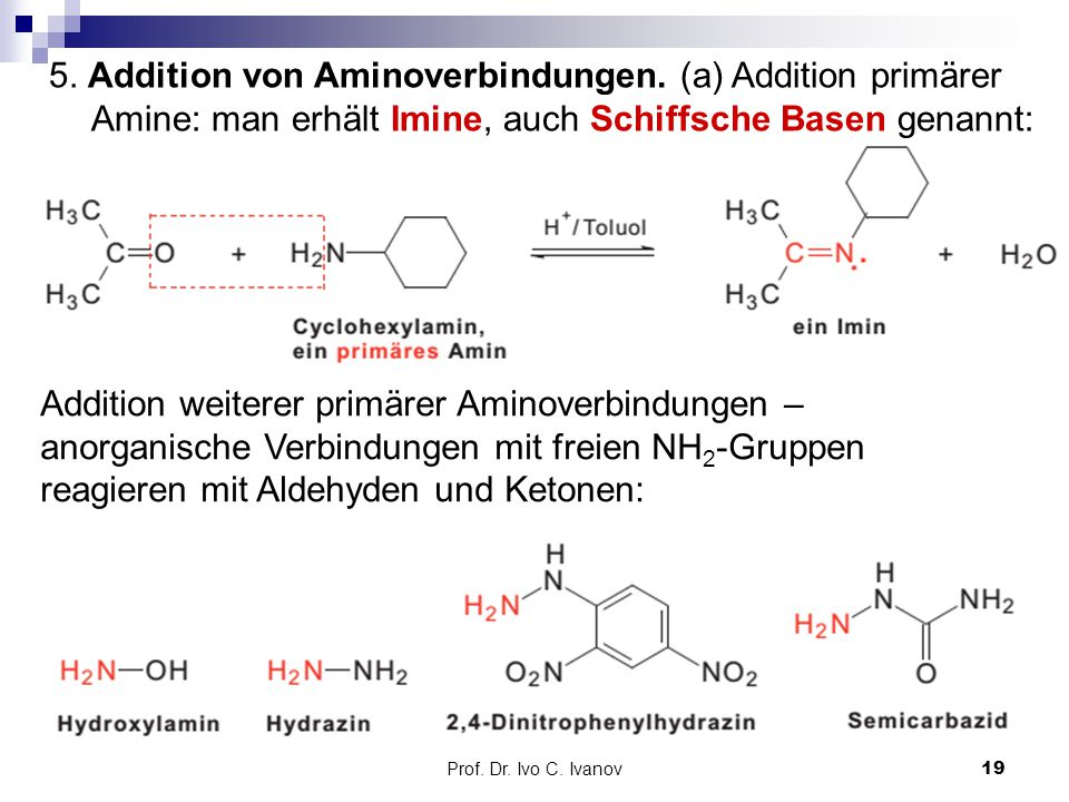 5. Addition von Aminoverbindungen