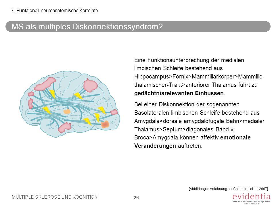 MS als multiples Diskonnektionssyndrom
