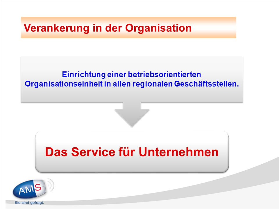 Verankerung in der Organisation