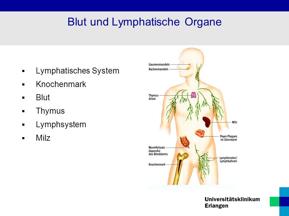 Blut und Lymphatische Organe