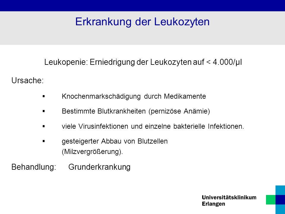 Erkrankung der Leukozyten