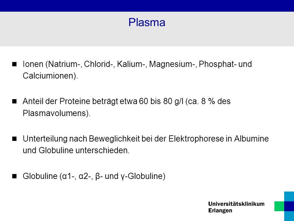 Plasma Ionen (Natrium-, Chlorid-, Kalium-, Magnesium-, Phosphat- und Calciumionen).