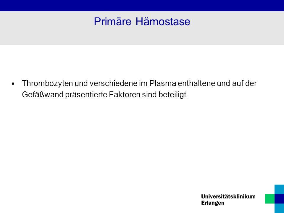 Primäre Hämostase Thrombozyten und verschiedene im Plasma enthaltene und auf der Gefäßwand präsentierte Faktoren sind beteiligt.
